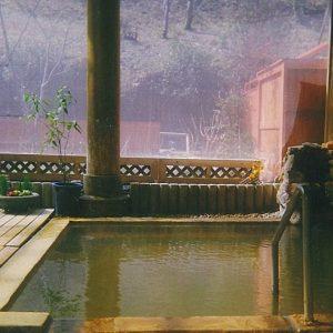 仙寿の里ラムネ温泉